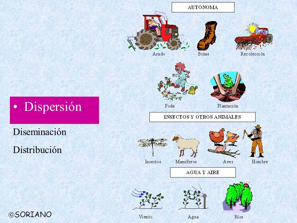 Dispersión Diseminación Distribución SORIANO