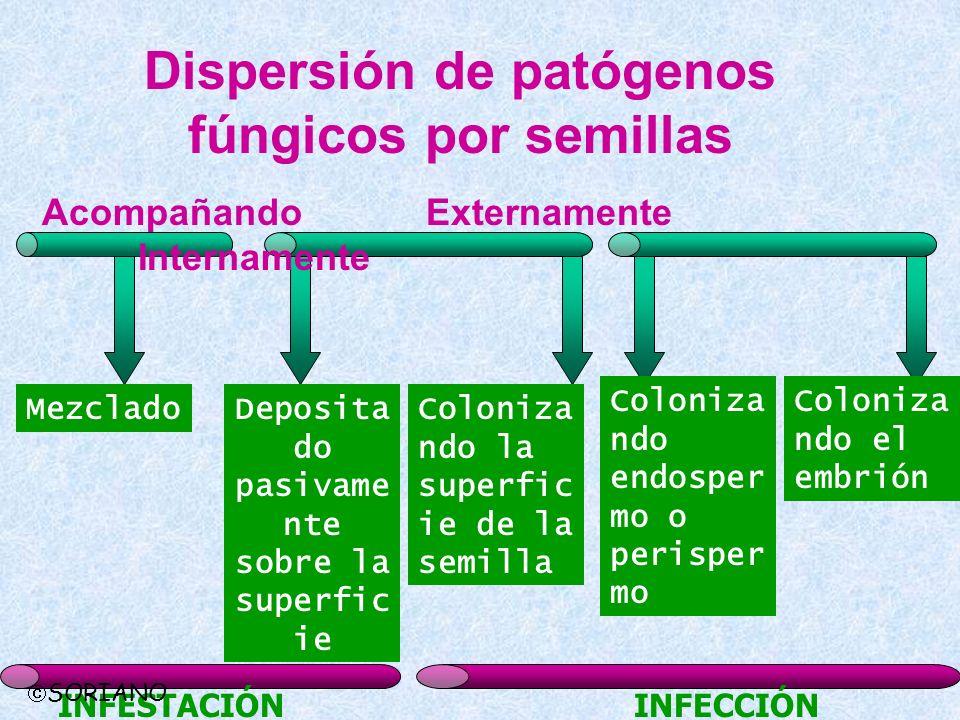 Dispersión de patógenos fúngicos por semillas