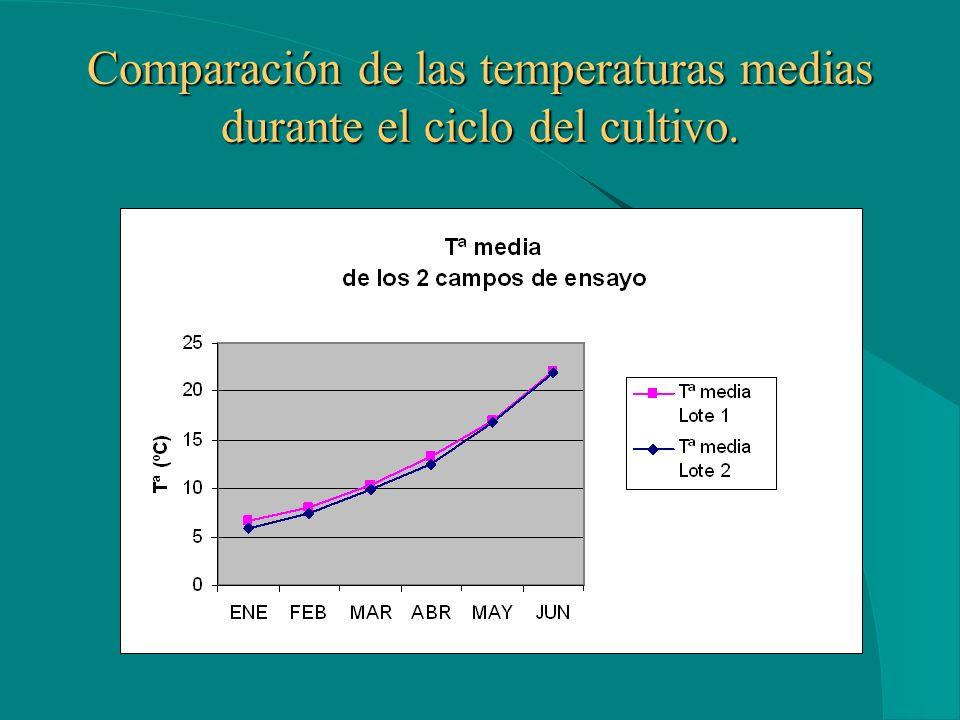 Comparación de las temperaturas medias durante el ciclo del cultivo.