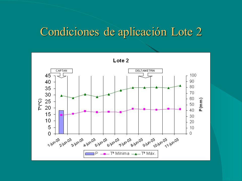 Condiciones de aplicación Lote 2