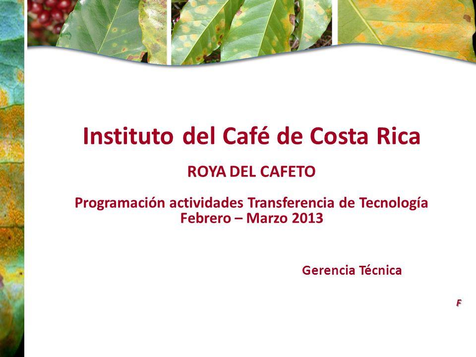 Instituto del Café de Costa Rica