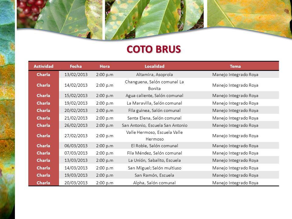 COTO BRUS Actividad Fecha Hora Localidad Tema Charla 13/02/2013