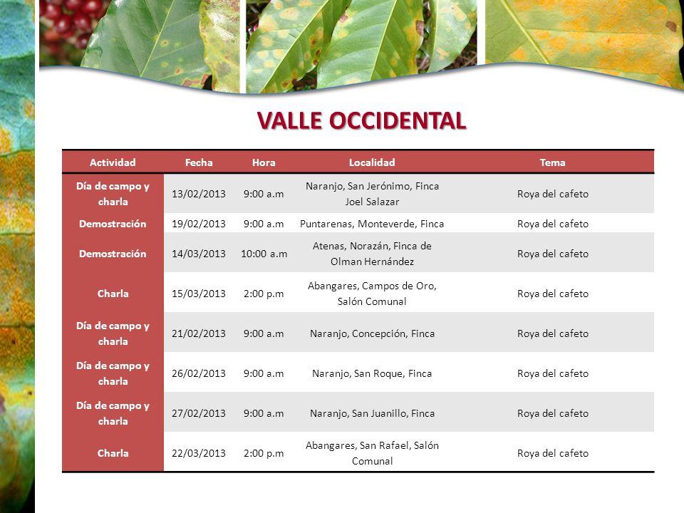 VALLE OCCIDENTAL Actividad Fecha Hora Localidad Tema