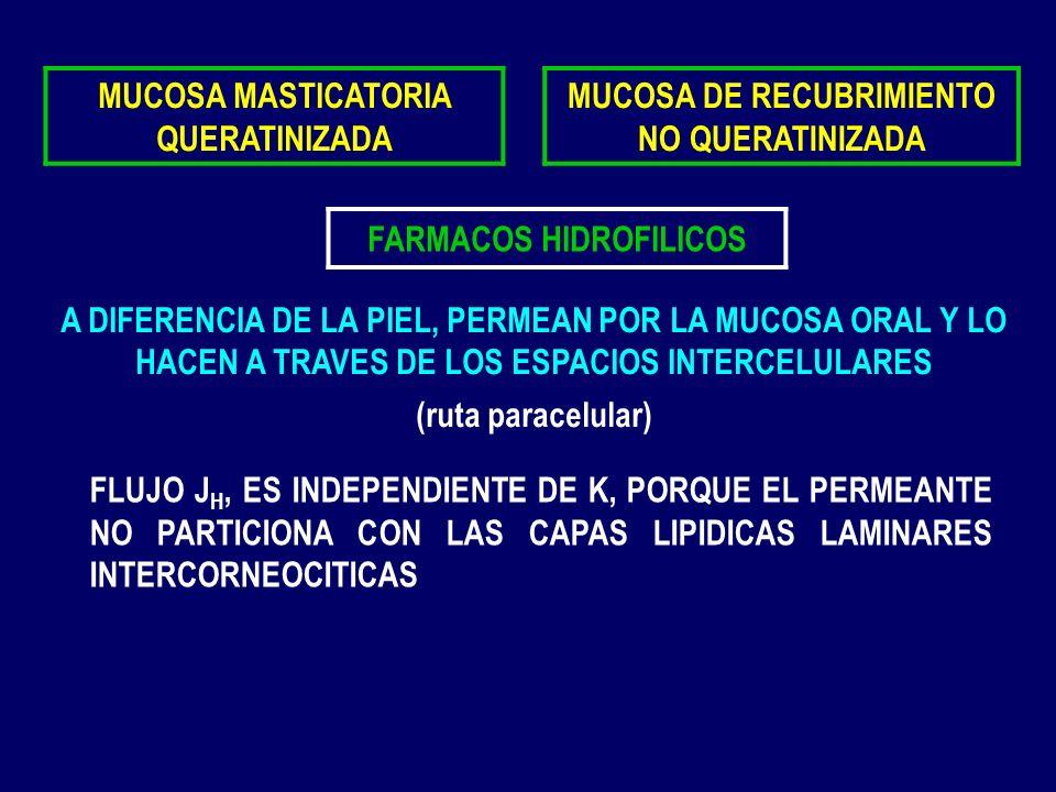 MUCOSA MASTICATORIA QUERATINIZADA