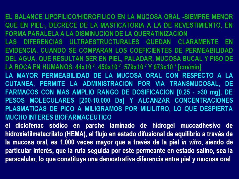 EL BALANCE LIPOFILICO/HIDROFILICO EN LA MUCOSA ORAL -SIEMPRE MENOR QUE EN PIEL-, DECRECE DE LA MASTICATORIA A LA DE REVESTIMIENTO, EN FORMA PARALELA A LA DISMINUCION DE LA QUERATINIZACION