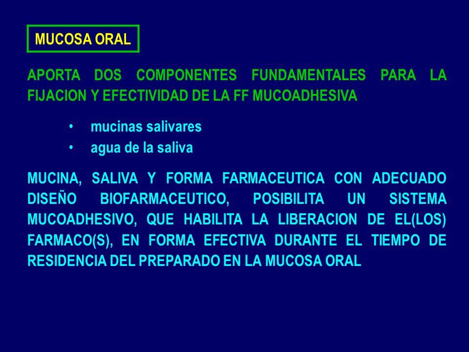 MUCOSA ORAL APORTA DOS COMPONENTES FUNDAMENTALES PARA LA FIJACION Y EFECTIVIDAD DE LA FF MUCOADHESIVA.