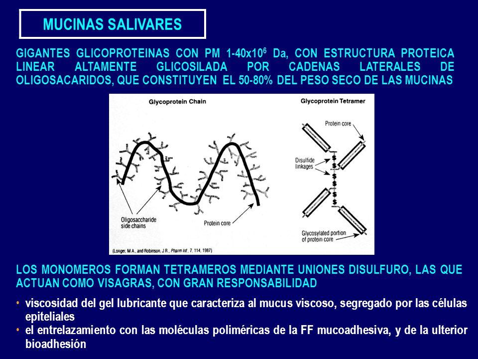 MUCINAS SALIVARES