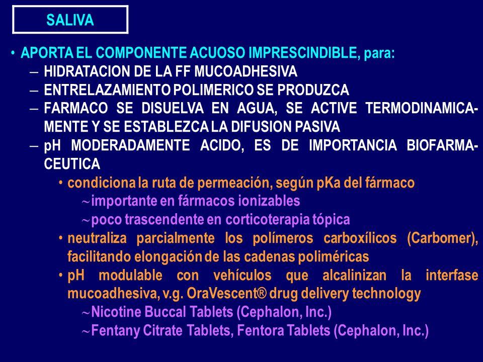 SALIVA APORTA EL COMPONENTE ACUOSO IMPRESCINDIBLE, para: