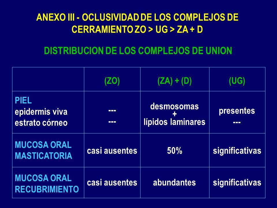 DISTRIBUCION DE LOS COMPLEJOS DE UNION