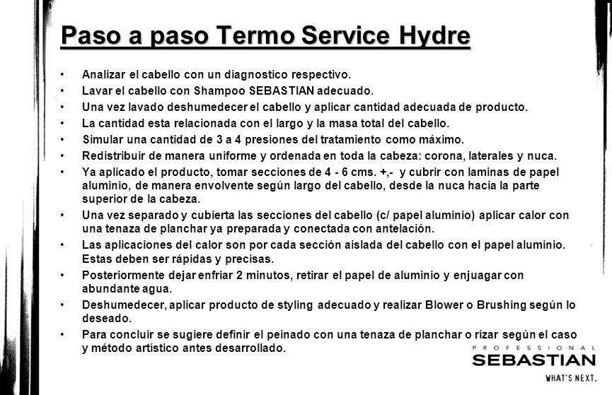 Paso a paso Termo Service Hydre