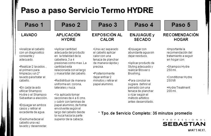 Paso a paso Servicio Termo HYDRE