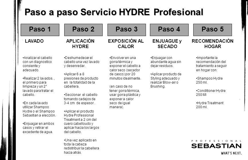 Paso a paso Servicio HYDRE Profesional