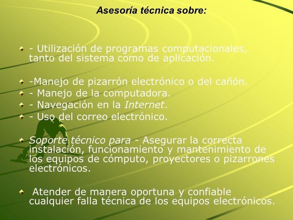 Asesoría técnica sobre: