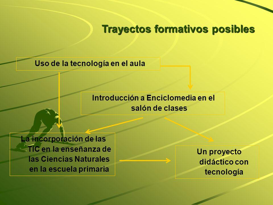Trayectos formativos posibles