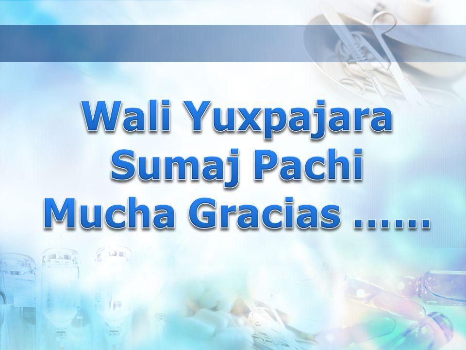 Wali Yuxpajara Sumaj Pachi Mucha Gracias ……