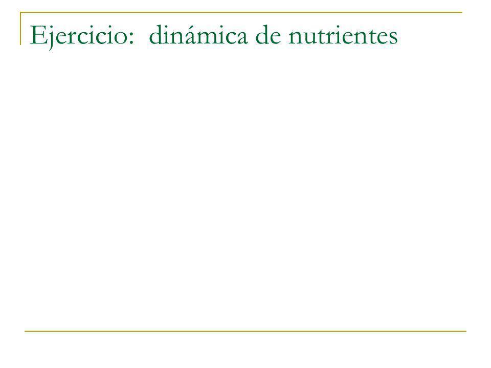 Ejercicio: dinámica de nutrientes