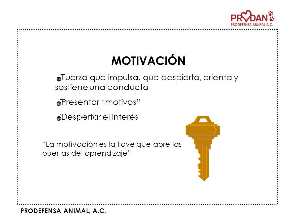 MOTIVACIÓN Fuerza que impulsa, que despierta, orienta y sostiene una conducta. Presentar motivos