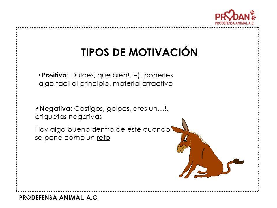 TIPOS DE MOTIVACIÓN Positiva: Dulces, que bien!, =), ponerles algo fácil al principio, material atractivo.