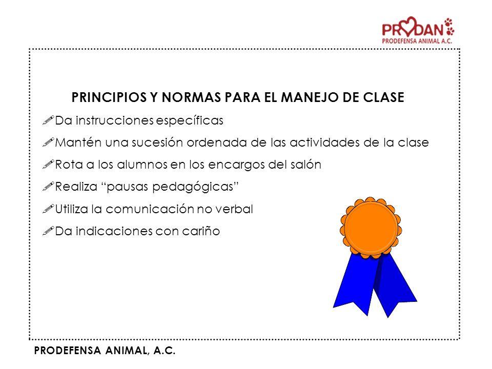 PRINCIPIOS Y NORMAS PARA EL MANEJO DE CLASE