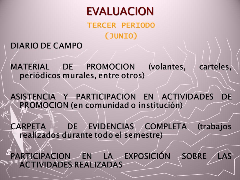 EVALUACION TERCER PERIODO (JUNIO) DIARIO DE CAMPO