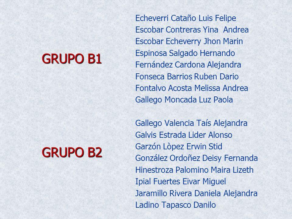 GRUPO B1 GRUPO B2 Echeverri Cataño Luis Felipe