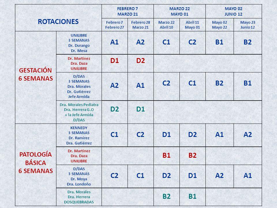 ROTACIONES A1 A2 C1 C2 B1 B2 D1 D2 GESTACIÓN 6 SEMANAS PATOLOGÍA