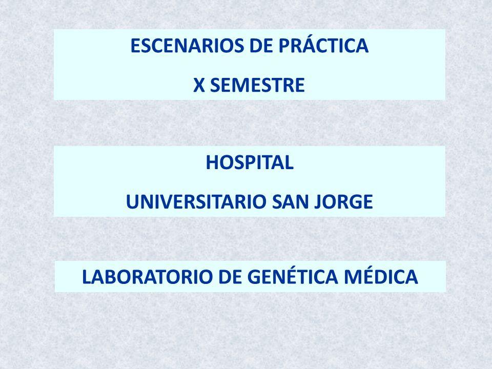 ESCENARIOS DE PRÁCTICA X SEMESTRE