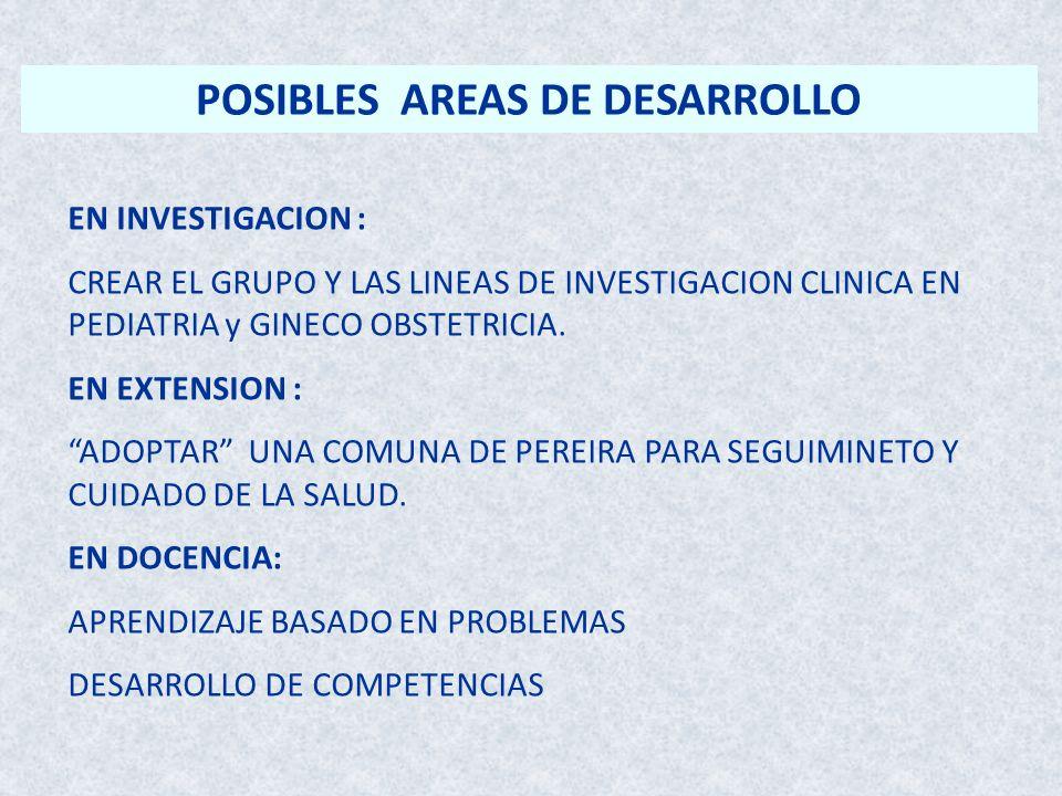 POSIBLES AREAS DE DESARROLLO