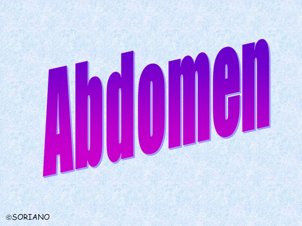 Abdomen SORIANO