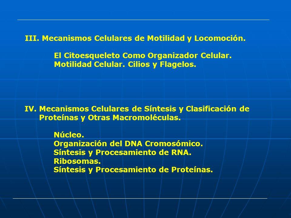 Mecanismos Celulares de Motilidad y Locomoción.