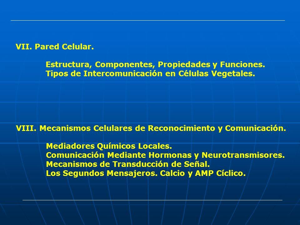 Pared Celular. Estructura, Componentes, Propiedades y Funciones. Tipos de Intercomunicación en Células Vegetales.
