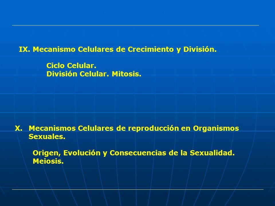 Mecanismo Celulares de Crecimiento y División.