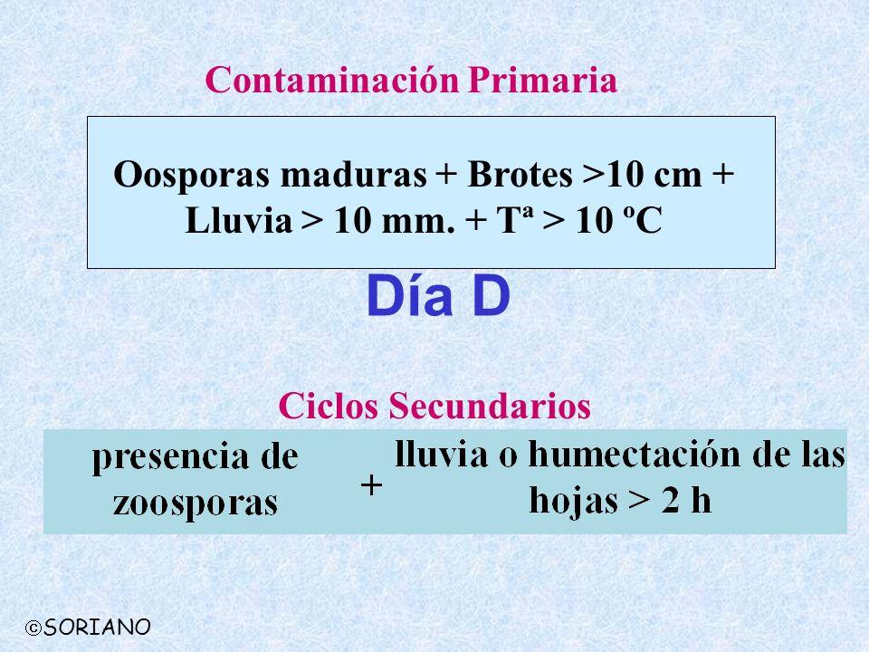 Día D Contaminación Primaria