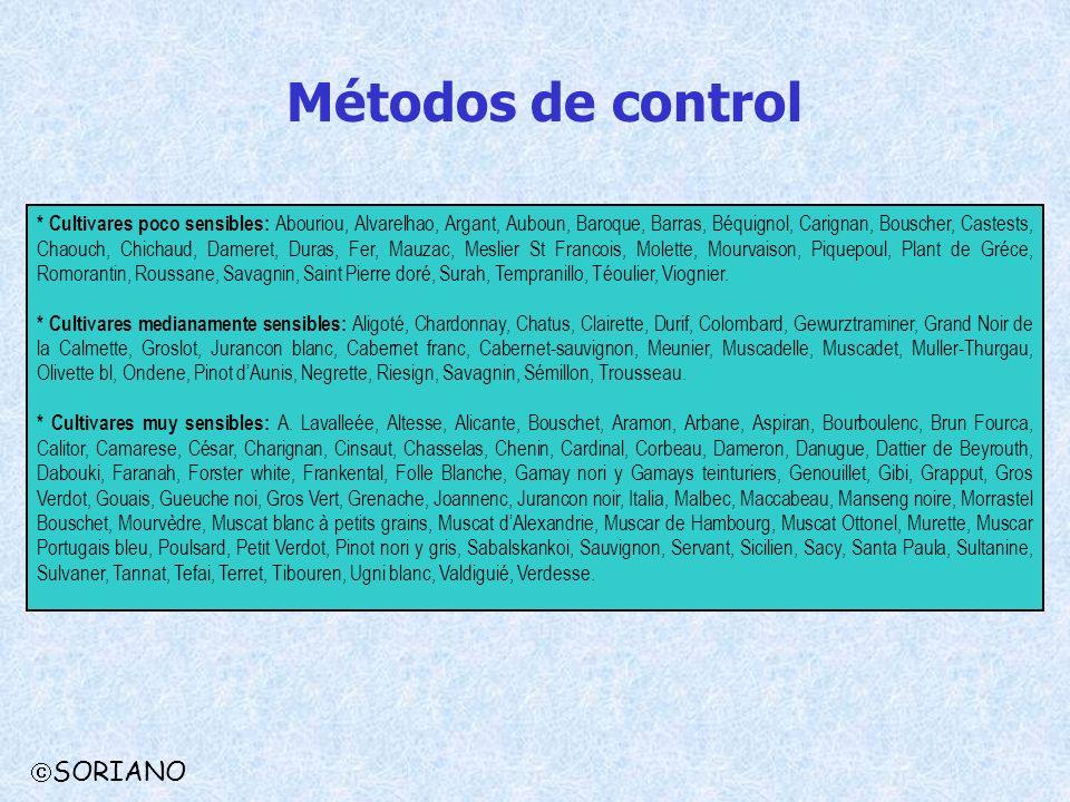 Métodos de control SORIANO