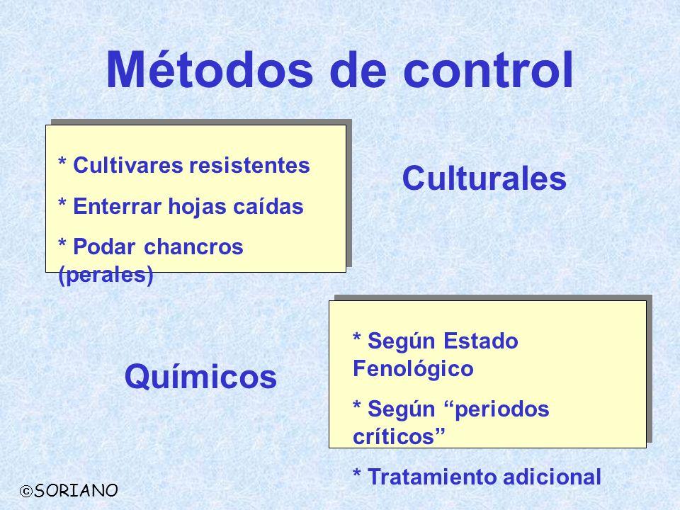 Métodos de control Culturales Químicos * Cultivares resistentes