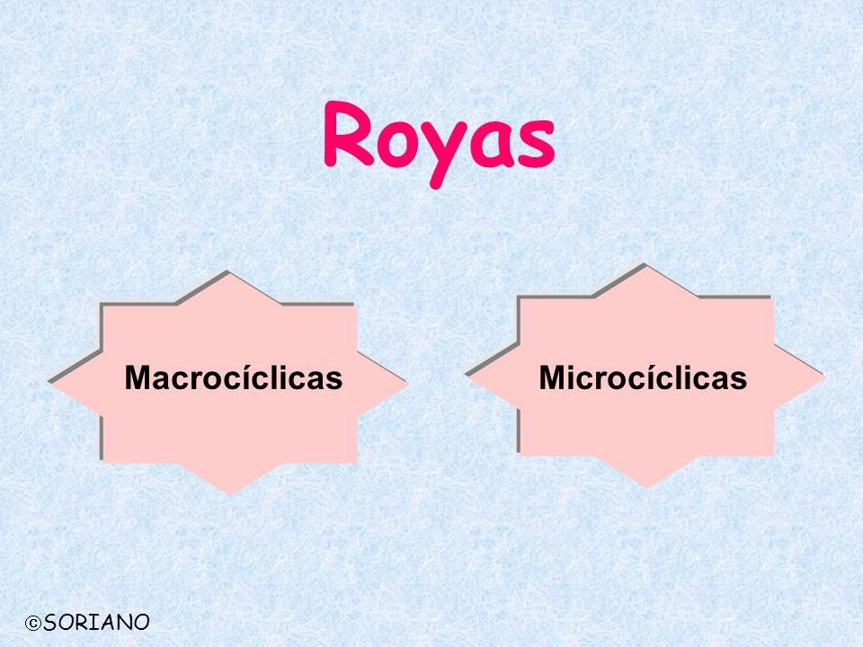 Royas Macrocíclicas Microcíclicas SORIANO