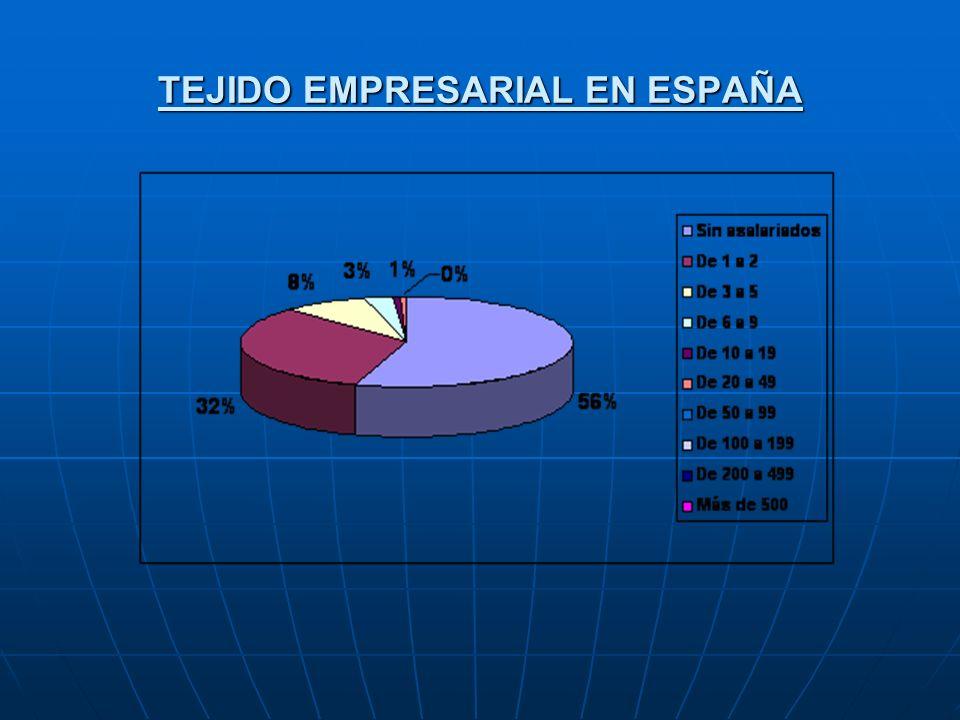 TEJIDO EMPRESARIAL EN ESPAÑA