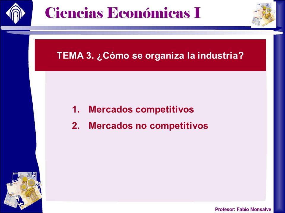 TEMA 3. ¿Cómo se organiza la industria