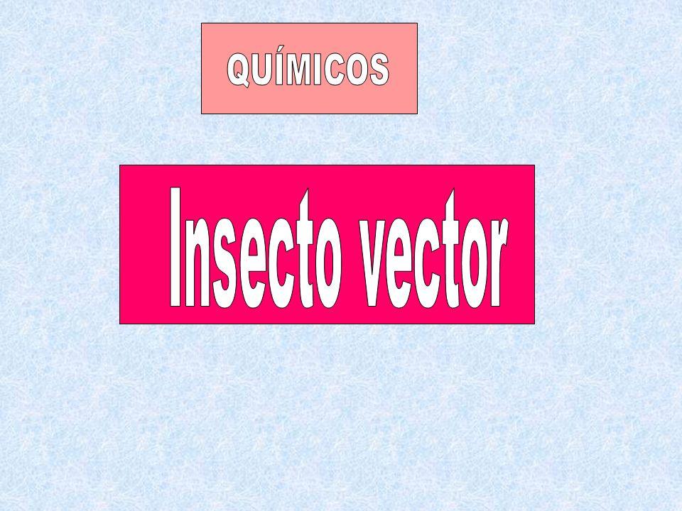 QUÍMICOS Insecto vector