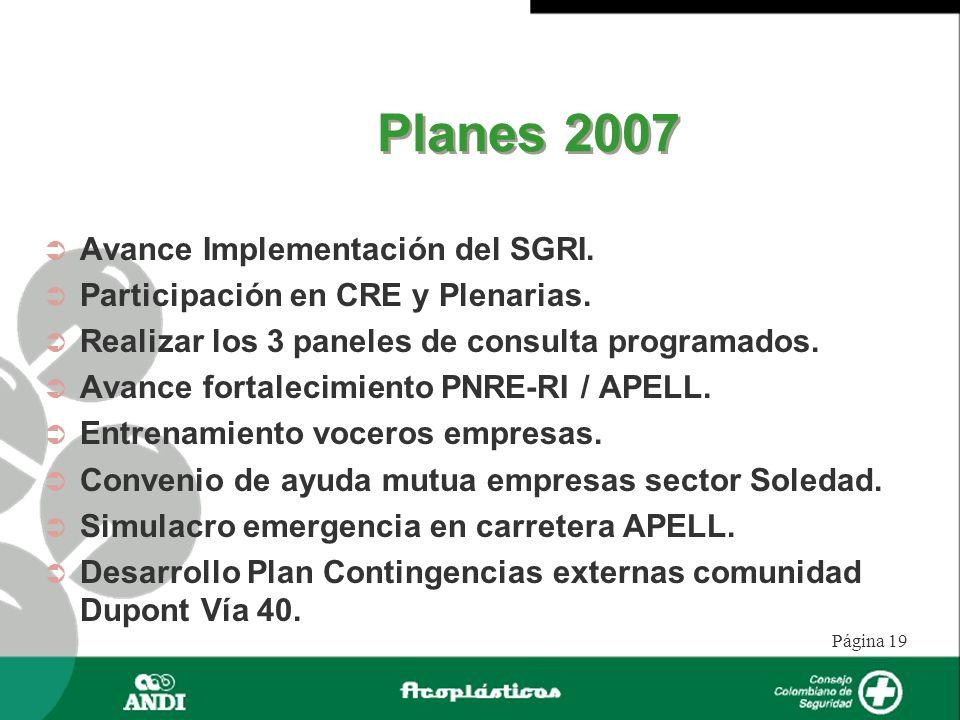 Planes 2007 Avance Implementación del SGRI.