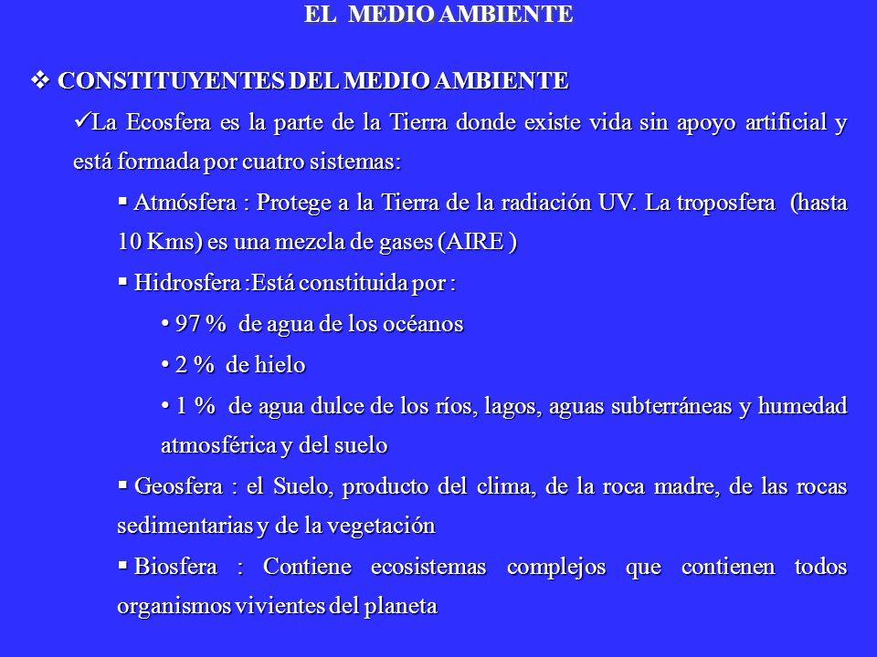 EL MEDIO AMBIENTECONSTITUYENTES DEL MEDIO AMBIENTE.