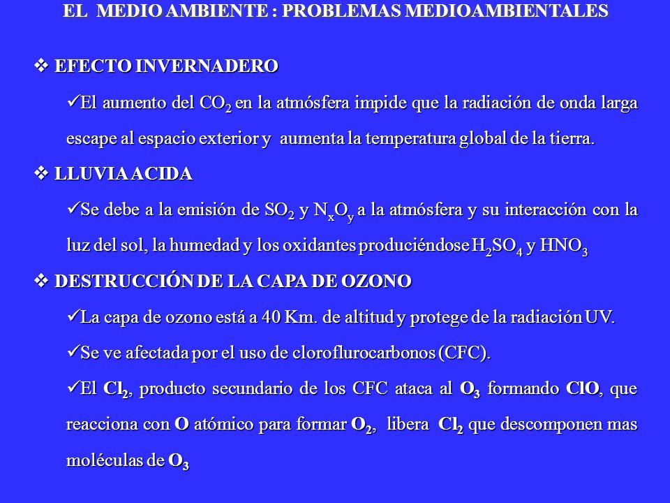 EL MEDIO AMBIENTE : PROBLEMAS MEDIOAMBIENTALES