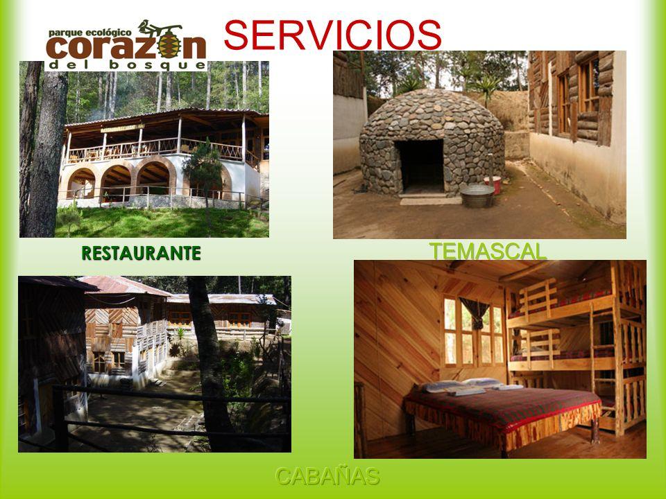 SERVICIOS RESTAURANTE TEMASCAL CABAÑAS