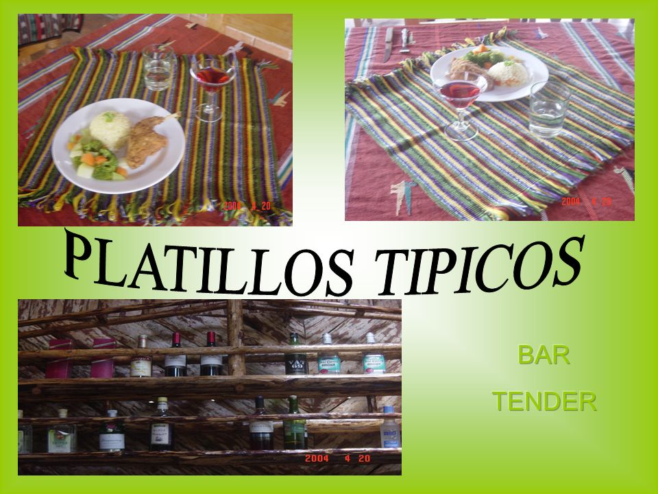 PLATILLOS TIPICOS BAR TENDER