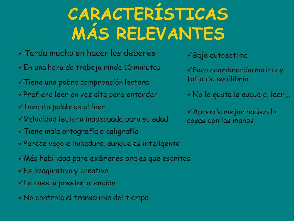 CARACTERÍSTICAS MÁS RELEVANTES