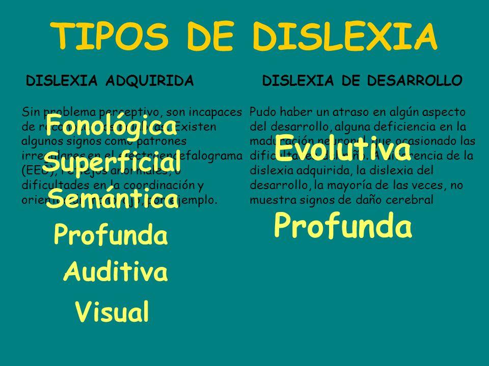 TIPOS DE DISLEXIA Evolutiva Profunda Fonológica Superficial Semántica