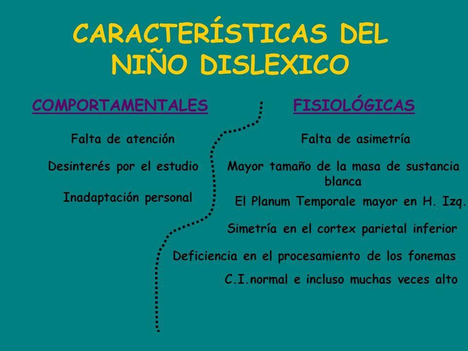 CARACTERÍSTICAS DEL NIÑO DISLEXICO