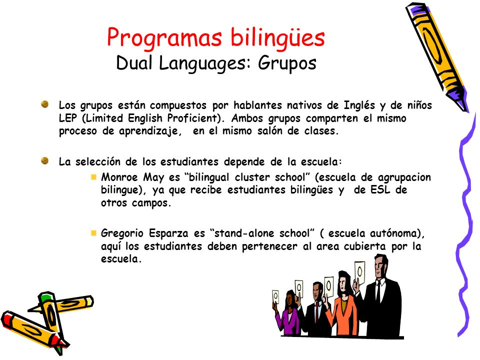 Programas bilingües Dual Languages: Grupos