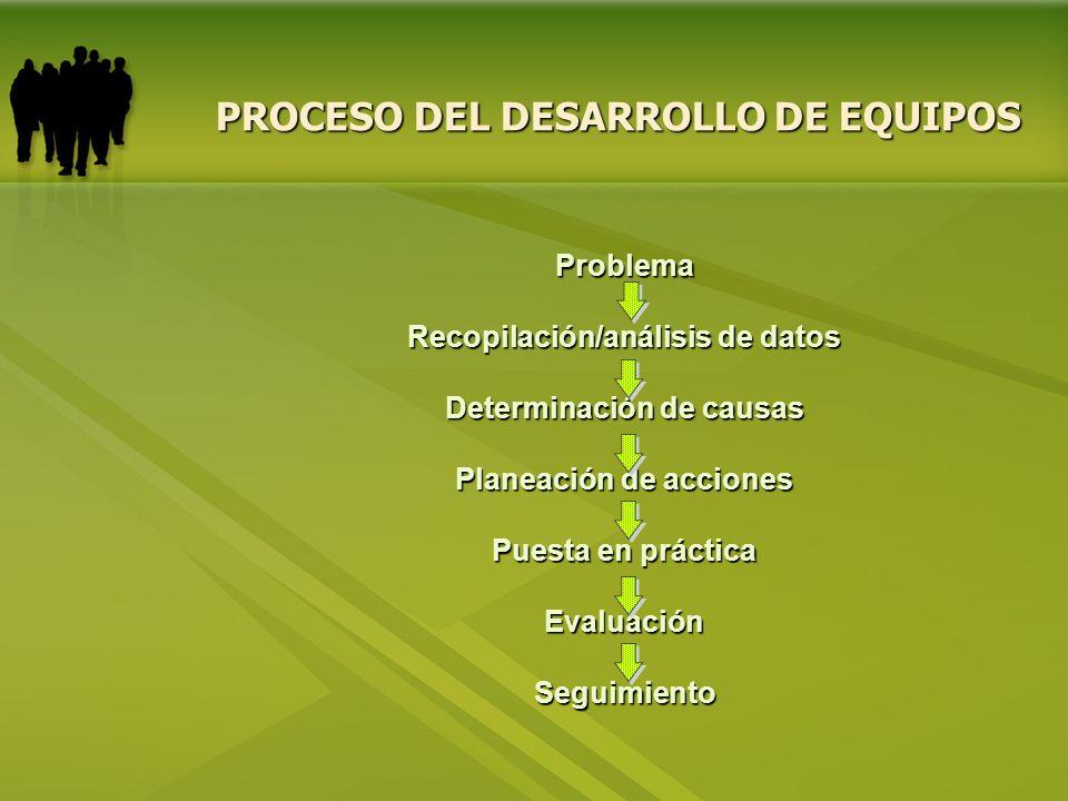 PROCESO DEL DESARROLLO DE EQUIPOS