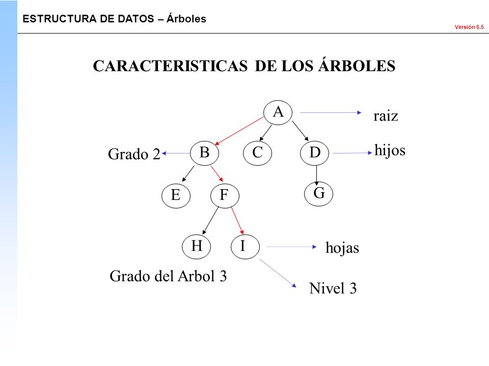 CARACTERISTICAS DE LOS ÁRBOLES
